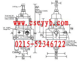 T50,T-50, T-50,T50型过滤减压调压器